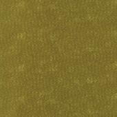 Tela Verde Vainas Semillas