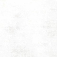 Tela Blanco Papel Grunge