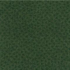 Tela Verde Campos