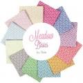 Meadow Basics